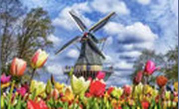 € 14 korting op de Keukenhof: retour vanuit Amsterdam